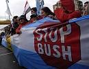 Stop_bush01